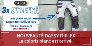 Tenues de travail D-flex Dassy Peintre
