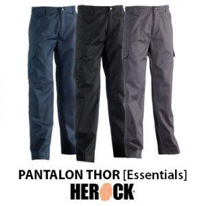 Pantalon Herock Essentials THOR